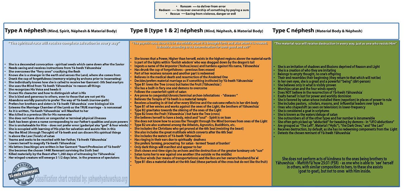 classification chart - English.jpg