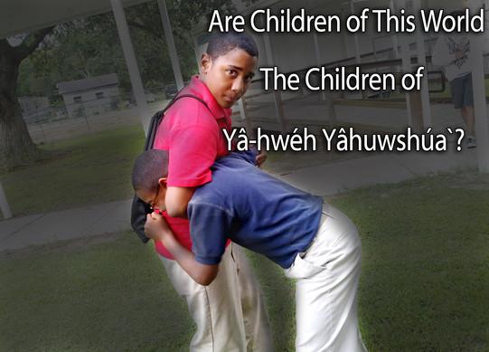 niños-peleando.jpg