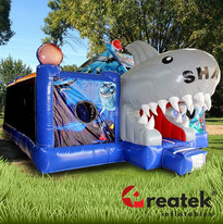 inflatable castles with slides (7).jpg