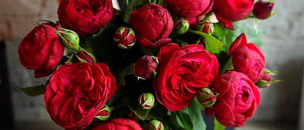 Пионовидные розы Red Piano в фирменном пакете la tulipe / 9 шт