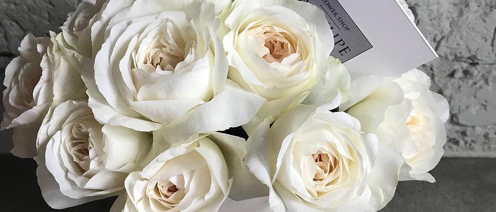 Розы Девида Остина PURITY/ 11 шт.