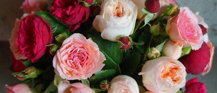 Букет из ароматных садовых роз в фирменном пакете LA TULIPE / 11шт./17шт./21шт.