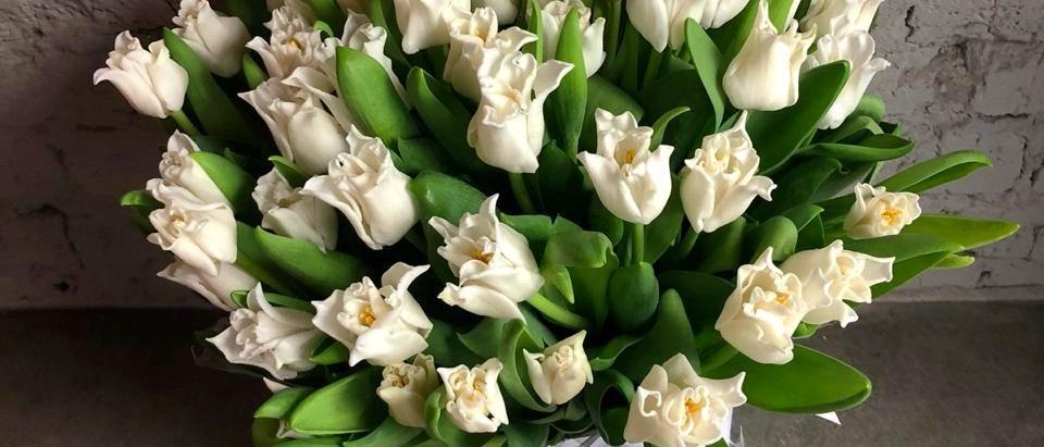 Белые остроконечные тюльпаны в фирменном пакете La Tulipe