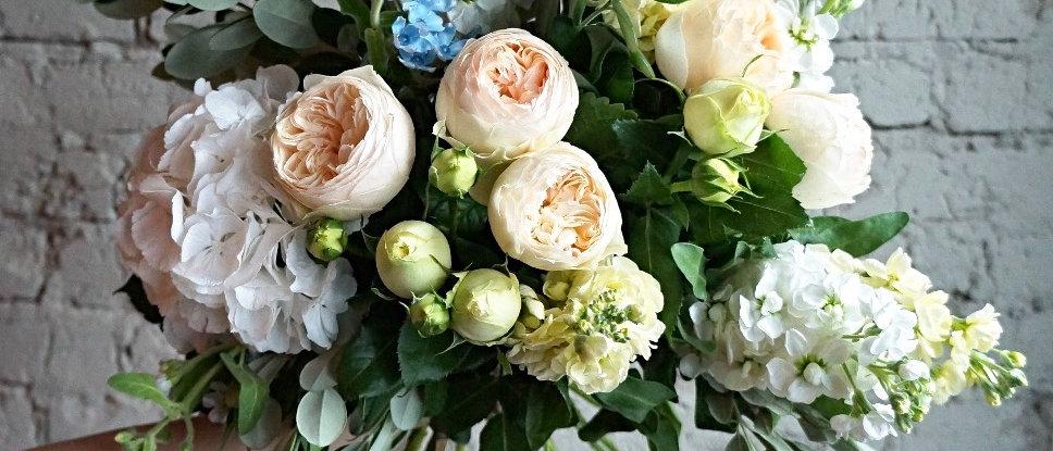 Розы Остина и Оксипеталум