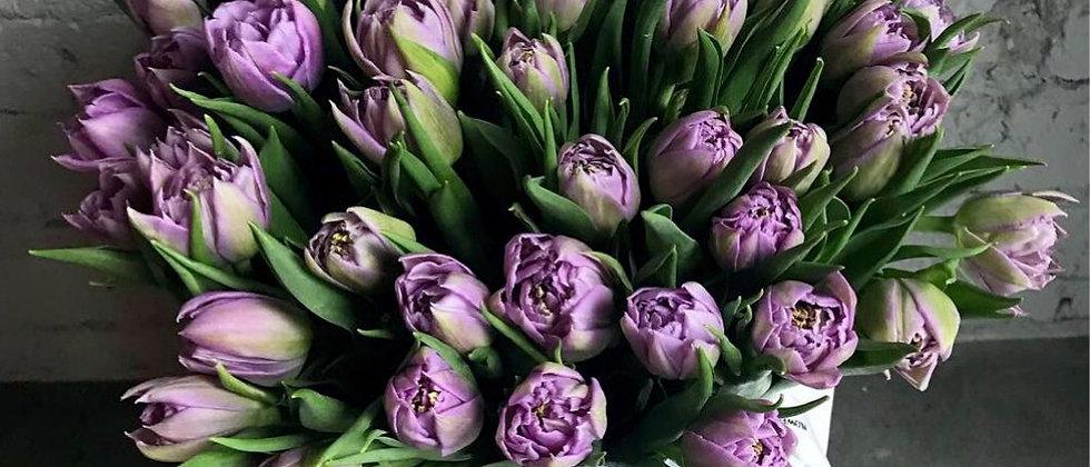 Лавандовые пионовидные тюльпаны в фирменном пакете La Tulipe / s/m/l .