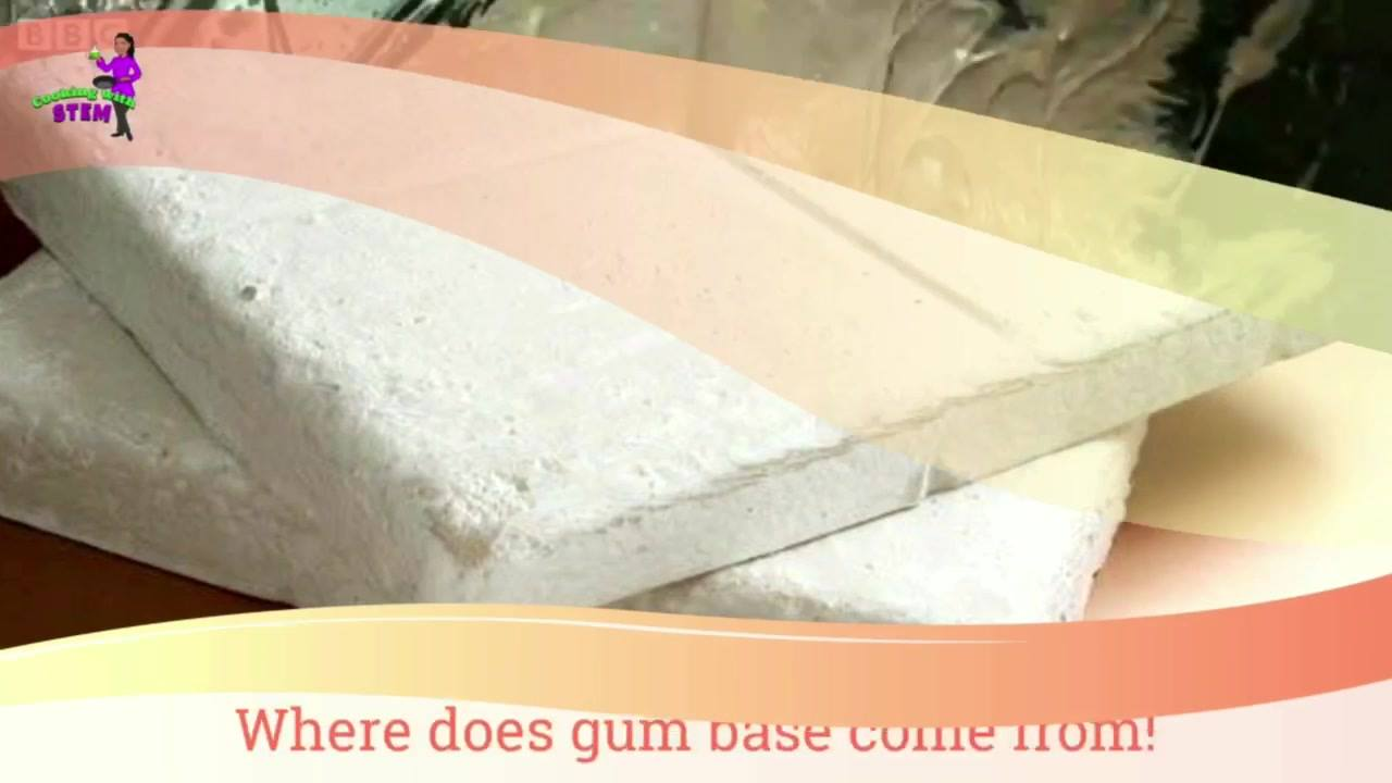 Gum!? Have you ever wondered how it's made? Children learn about ecosystems, Polymers and more with this sticky lesson. www.CookingwithSTEM.org #STEM #STEAM