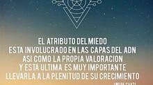 CODIGO ALMICO- Mensaje 8