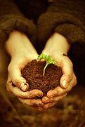 abundancia, prosperidad, salud, bienestar, dinero, opulencia, san rafael, angel abundia, devas del dinero