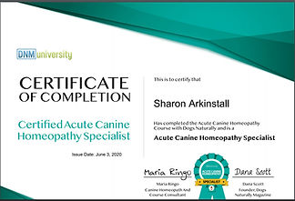 ACUTE CANINE HOMEOPATHY SPECAILIST CERTI