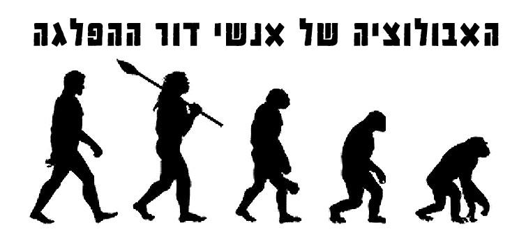 האבולוציה של אנשי דור ההפלגה