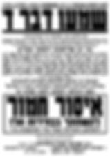 רבי יקותיאל יהודה טייטלבוים,רבי ישראל חיים מנשה פרידמאן,התאחדות הרבנים דאמריקה וקנדה, רבי שלמה לייב ויינברגר, רבי יקותיאל יהודה פילאפף,רבי חיים דוד כץ,בחירות,עיריה,מקומיות,בחירות,שלטון,אגודה,אגודת ישראל,מרן ראש הישיבה,אל תתחבר לרשע,אגודת ישראל,אריה דרעי,אלי ישי,מלכות של מינות,ערב רב