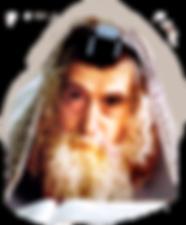 ריבניץ,ריבניצא,רבי חיים זנוויל אבר,בחירות,ציונות,מדינת ישראל