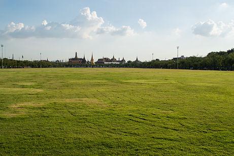 Field in downtown Bangkok, Thailand