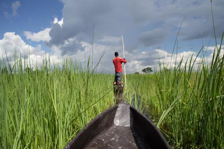 Maun, Okavango Delta / Botswana · 2017