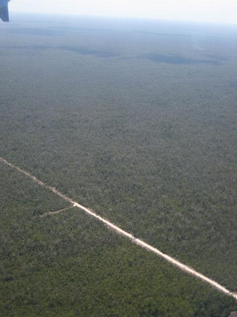 Jungle road in Yucatán, Mexico