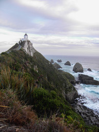 Nugget Point / New Zealand · 2009