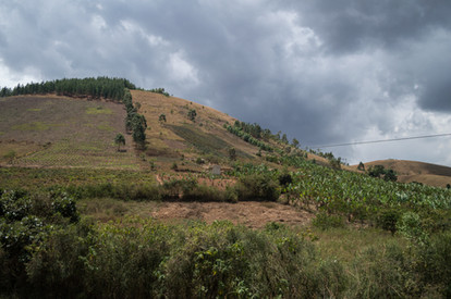 along the road / Uganda