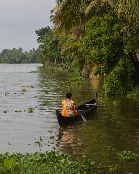 Alleppey Backwaters, Kerela / India · 2015