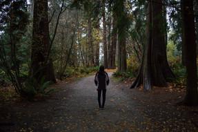Stanley Park, Vancouver, British Colombia / Canada · 2019