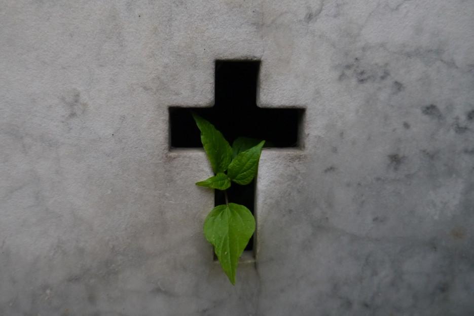 Recoleta Cemetery, Buenos Aires / Argentina · 2014