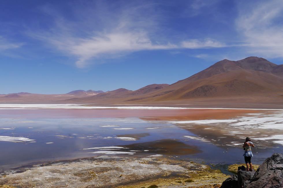 Laguna Colorada / Bolivia · 2014