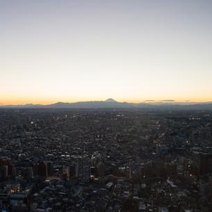 TOCHO, Tokyo / Japan