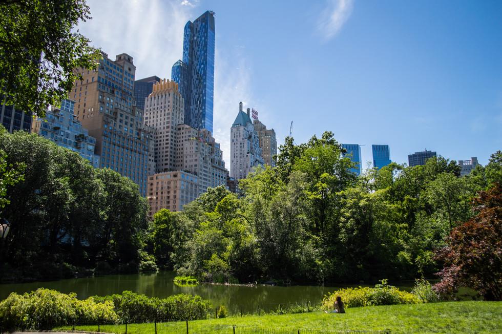 Central Park, Manhattan, New York / USA · 2016