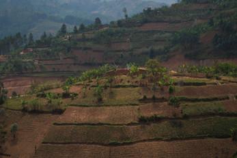 Rwanda · 2017