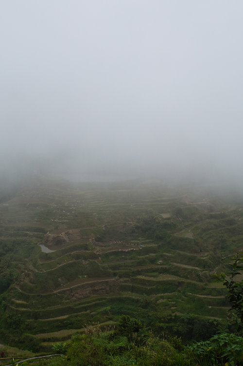 Rice terraces with mist in Banaue, Philippines