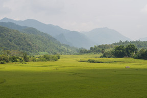 Laos · 2015