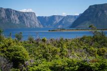 Western Brook Pond, Gros Morne National Park, Newfoundland / Canada · 2016