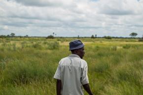 Maun, Okavango Delta / Botswana