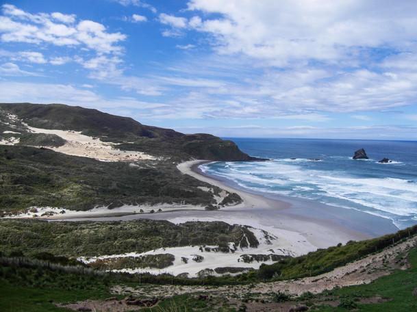 Sandfly Bay / New Zealand