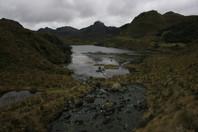 Cajas National Park / Ecuador · 2013