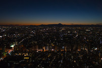 Tokyo / Japan · 2016