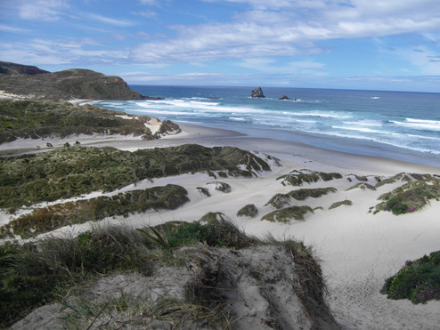 Sandfly Bay / New Zealand · 2009