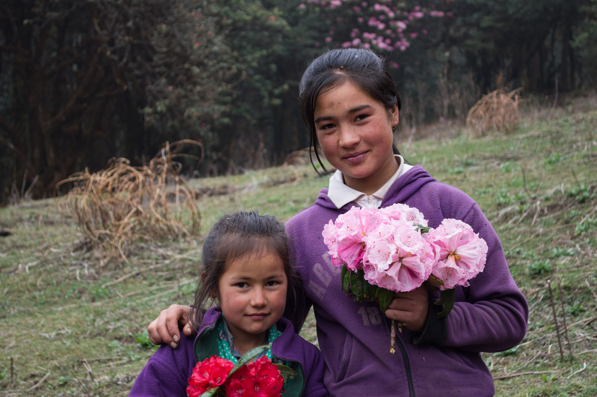 Himalayas / Nepal · 2015