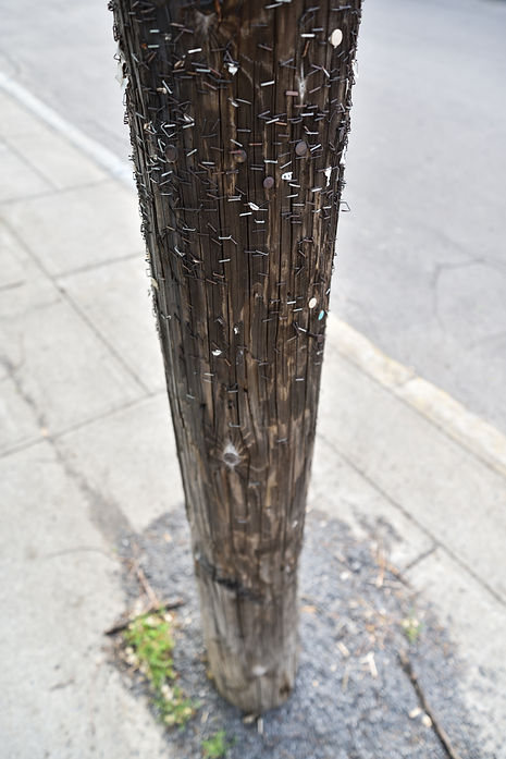 Wooden pole in Montreal, Canada