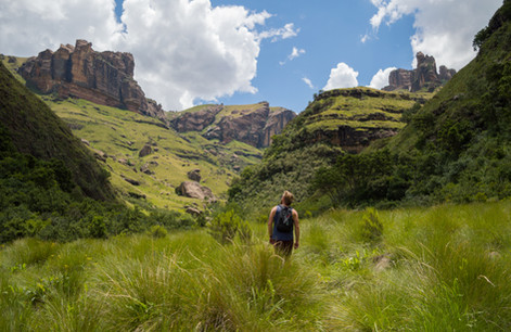 Drakenbergs Mountains / South Africa · 2017