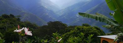 Coroico / Bolivia · 2014