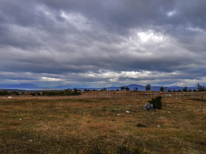 near Puerto Natales, Patagonia / Chile · 2014