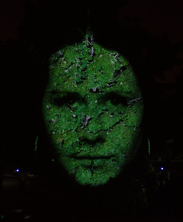 Cite memoire, projection of a face on a tree in Montreal