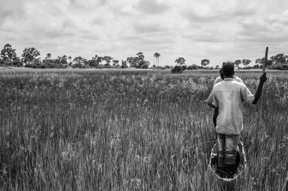 Okavango Delta / Botswana