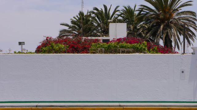 Paracas / Peru
