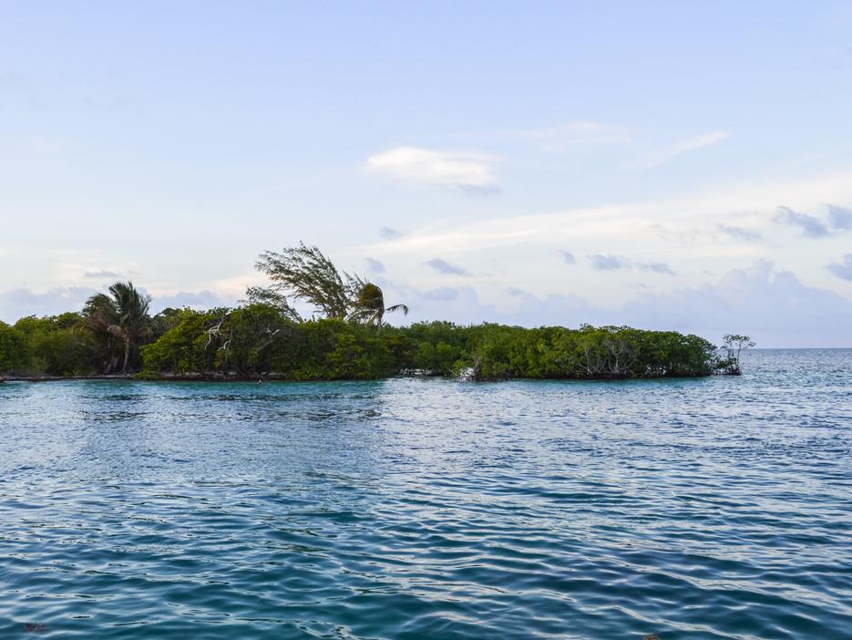 northern half, Caye Caulker / Belize · 2014