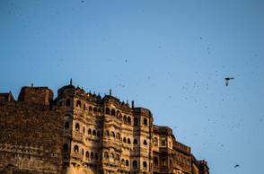 Mehrangarh Fort, Jodhpur / India · 2015