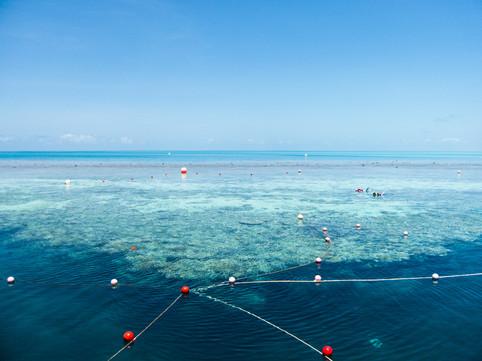 Great Barrier Reef / Australia · 2009