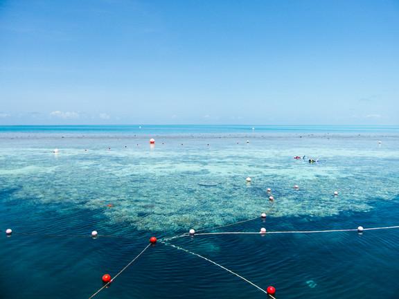 Great Barrier Reef / Australia