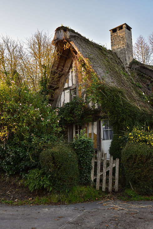 Traditional French house with straw thatched roof in Normandy, France