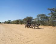Mantshwabisi / Botswana · 2017